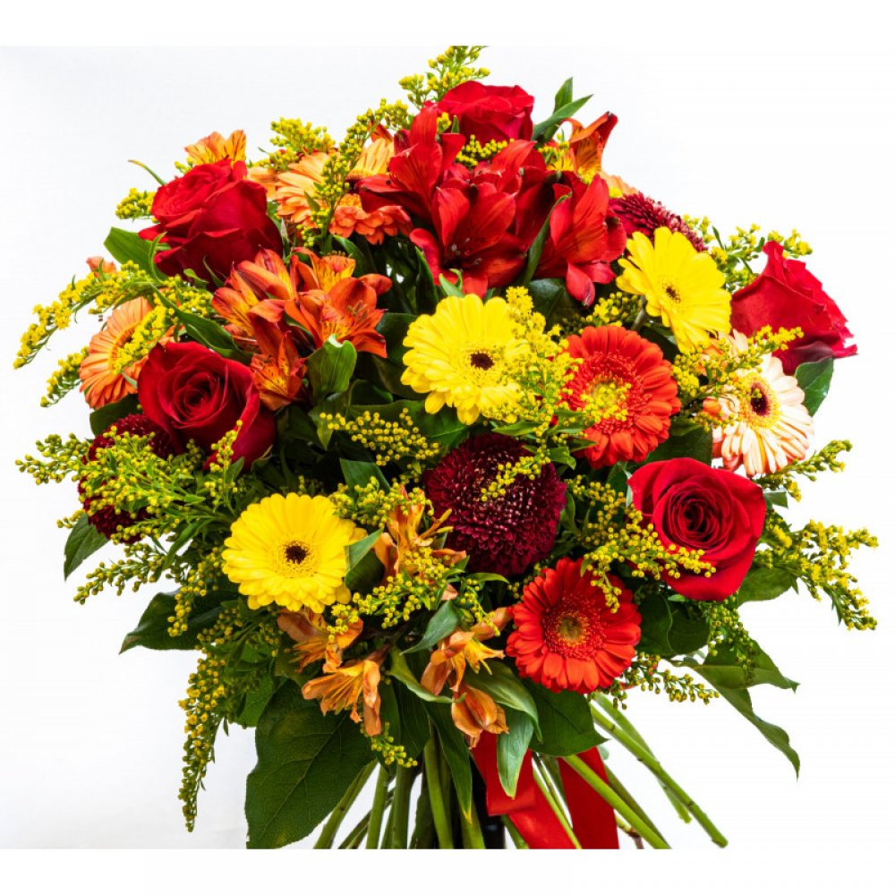 floraria online anemone